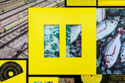 MPT_II_Cover-Design_IMG_1_Gallery-Grid